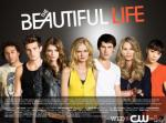 the-beautiful-life